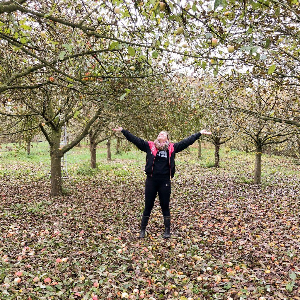 Ein Mädchen zwischen Apfelbäumen. Die Arme in die Luft, mit einem breiten Grinsen auf dem Gesicht. Die meisten Äpfel liegen schon auf dem Boden und die Bäume haben kaum noch Blätter, denn es ist schon November..